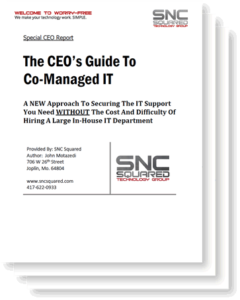 The CEO's Guide to Co-Managed IT Services